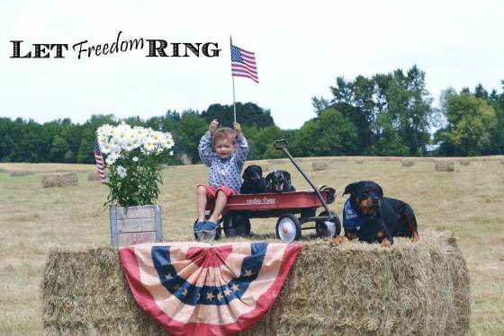 Let Freedom Ring type